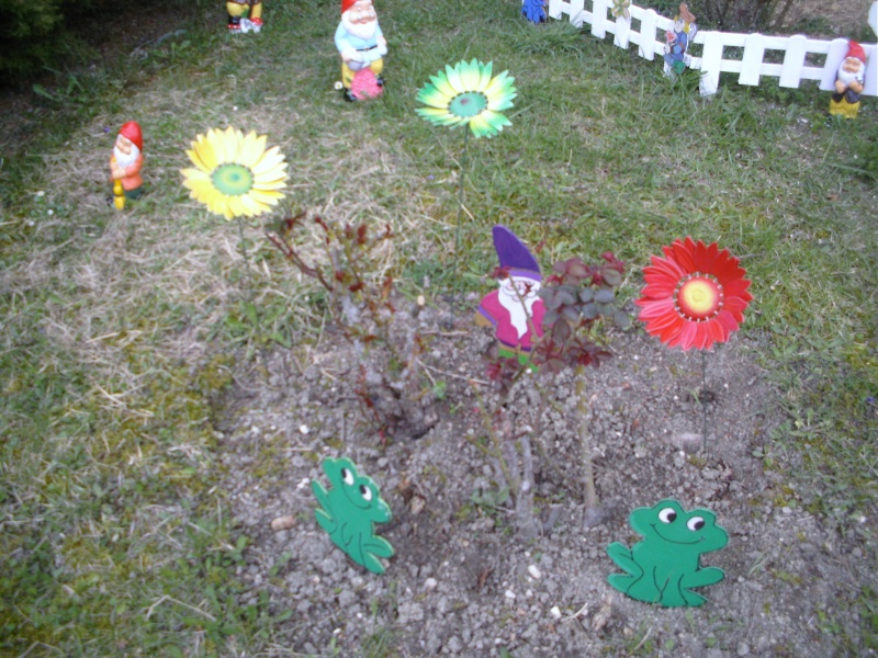 le jardin de lilas Dcfc0092