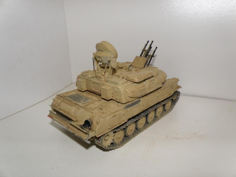 ZSU 23/4 shilka en irak P6050113