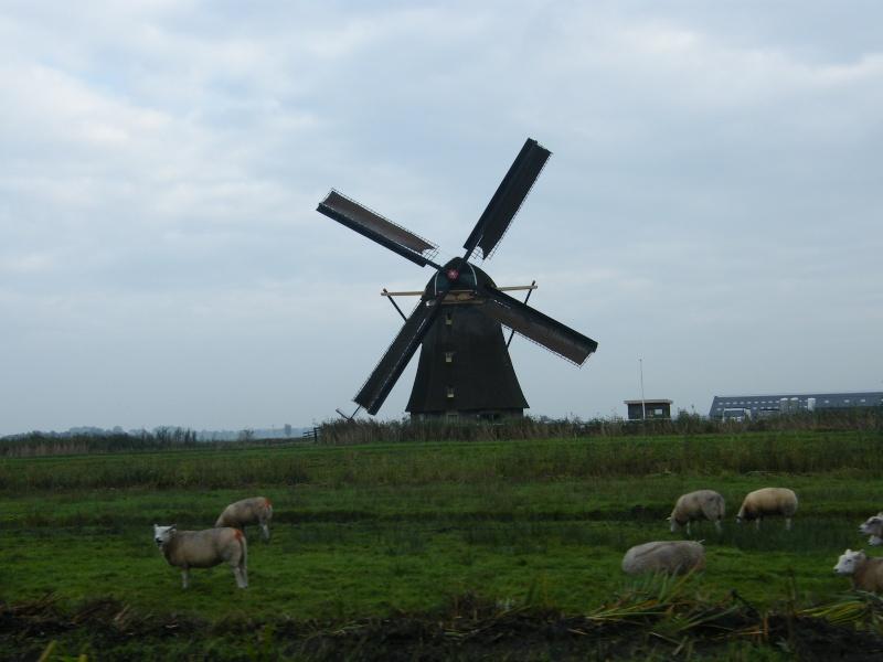 25 ans de la R25 aux Pays Bas: Dscf6628