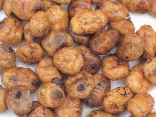 CARPE AU TIGERS NUTS Mega10