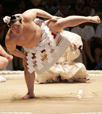 Sumotori un monde complexe Sumo_w10