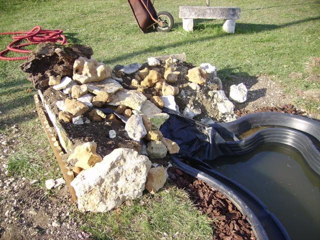 pour les rocailles ou bordures Pict1430