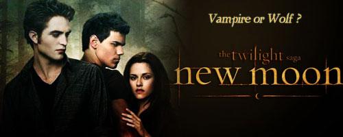Twilight Nw410