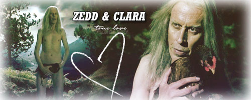 Legend of the Seeker Zedd110