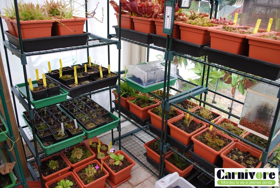 Photos de mes installations Carni_11