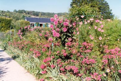 Les jardins de Claude MONET (Giverny) Masros10