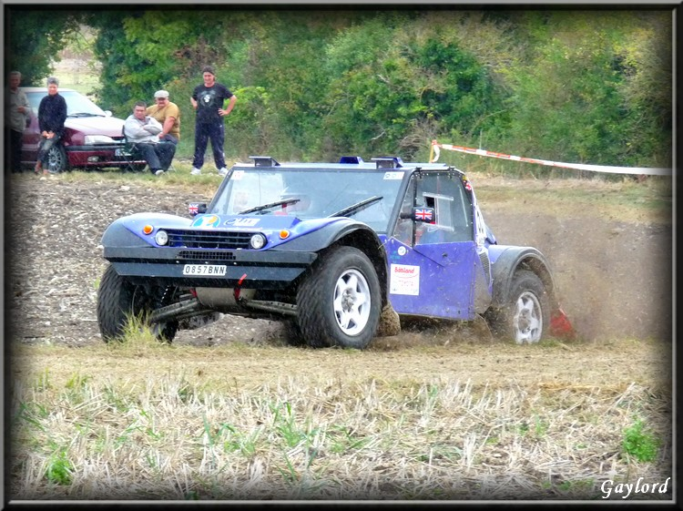 buggy - Request for Photo's Purple Buggy 53 P1020736