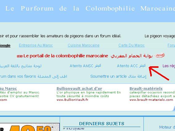 En direct: Le lâcher régional Smara (800-970 Km) de l'union de Rabat+l'union de Salé+l'union de Casablanca +autres (vendredi 22/05/2009) - Page 5 Atento10