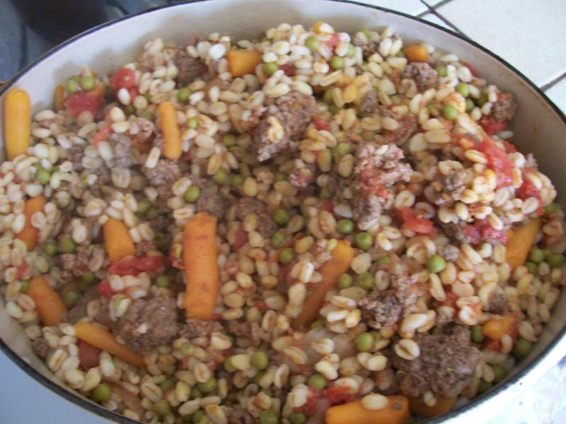 plat complet au blé et à la viande hachée 01013