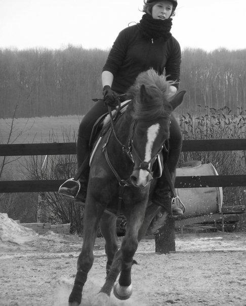 En mémoire de Lise, une amie a moi, décédée mardi... N1483011
