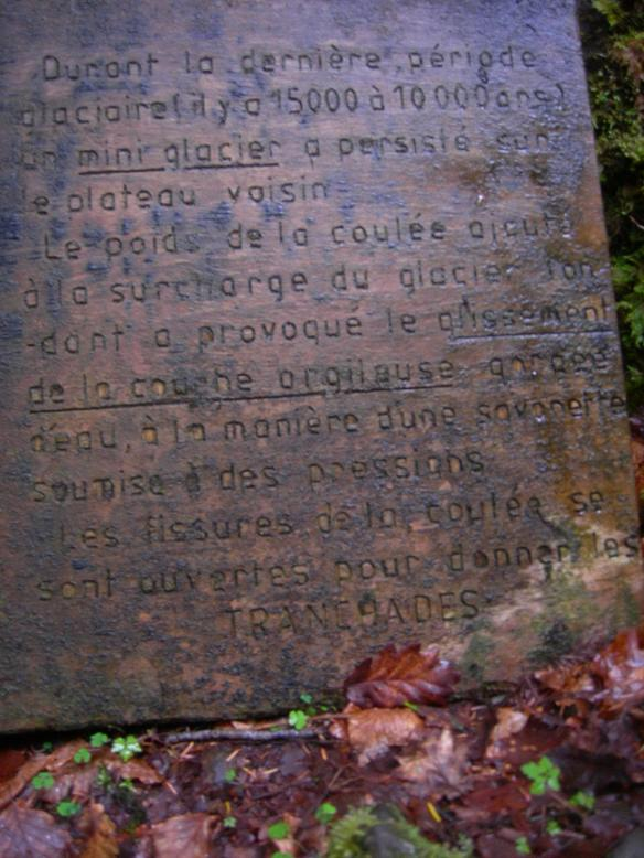 Tranchades de Laquairie (Saint-Amandin) Dscn4017