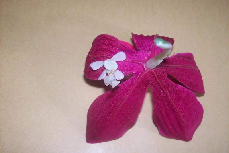 """Suivit de Douce """"mante orchidée"""" 100_6915"""
