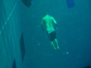 Nemo 33 P2070013