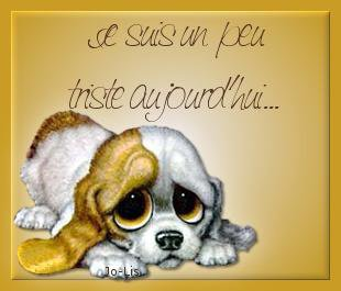 """""""important"""" un clic pour nos amis les betes! 23765511"""