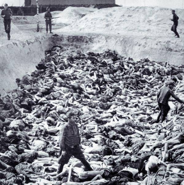 Libération du KZ Belsen : une affaire embrouillée… Fritz_10