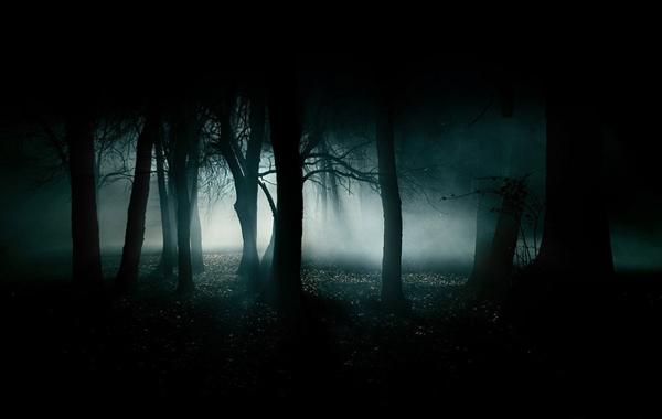 Aula de Criaturas Mágicas y el Bosque Bbf9e_11