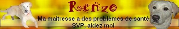 RENZO remis à l'adoption sous contrat SCB - Page 2 Renzo11