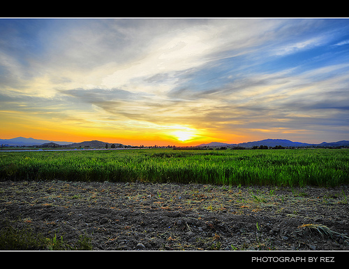 Travel in Los Angeles - Spring Season Farm16
