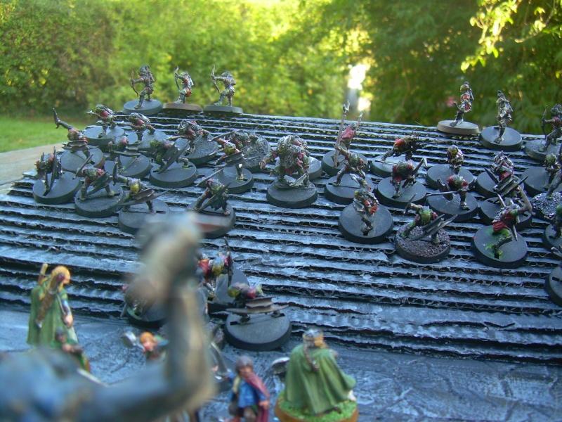 Mes mines de la Moria Dscn0531
