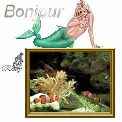 bonjour bon soir - Page 4 1phla710