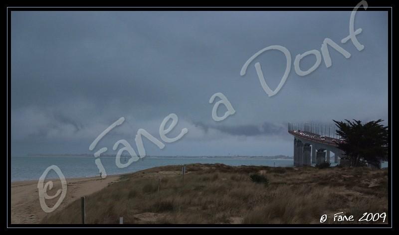 Dunes et Marais A Donf !!! - Page 4 Dscf5725