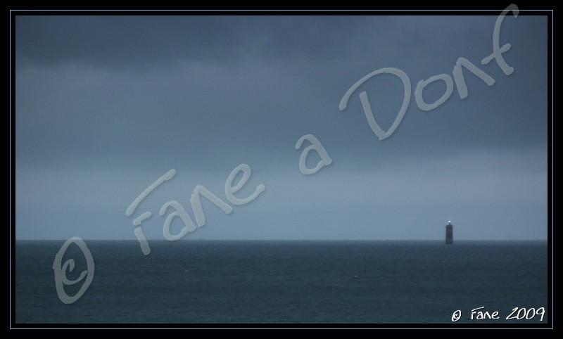 Dunes et Marais A Donf !!! - Page 4 Dscf5726