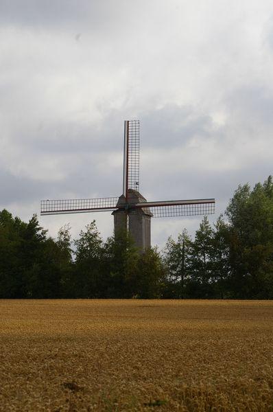 Moulins en Flandre Imgp5814