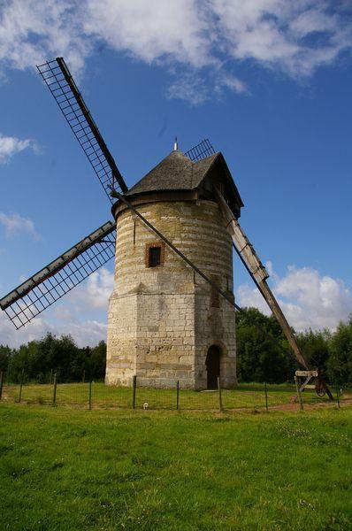 Moulins en Flandre Imgp5816