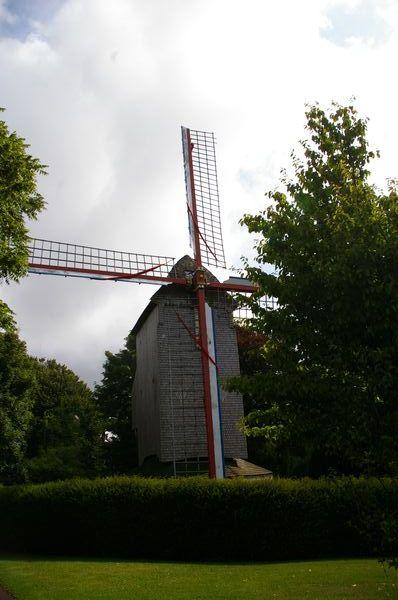 Moulins en Flandre Imgp5817
