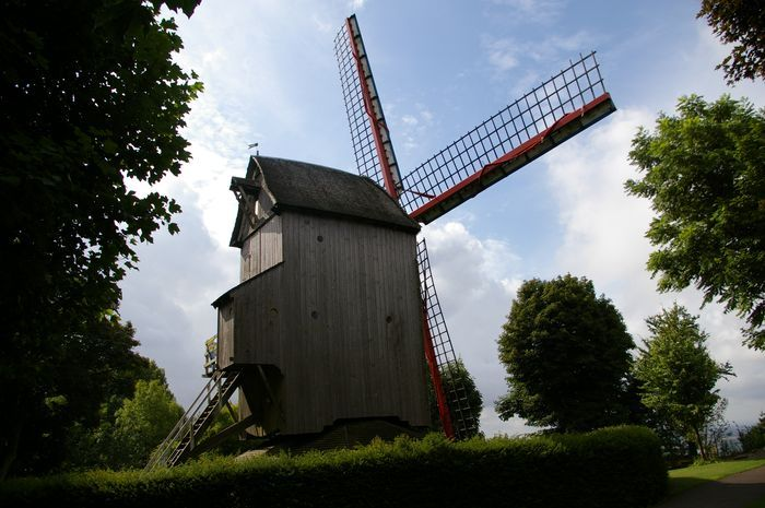 Moulins en Flandre Imgp5818