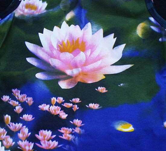 ecouter parler  du bouddhisme Lotus110