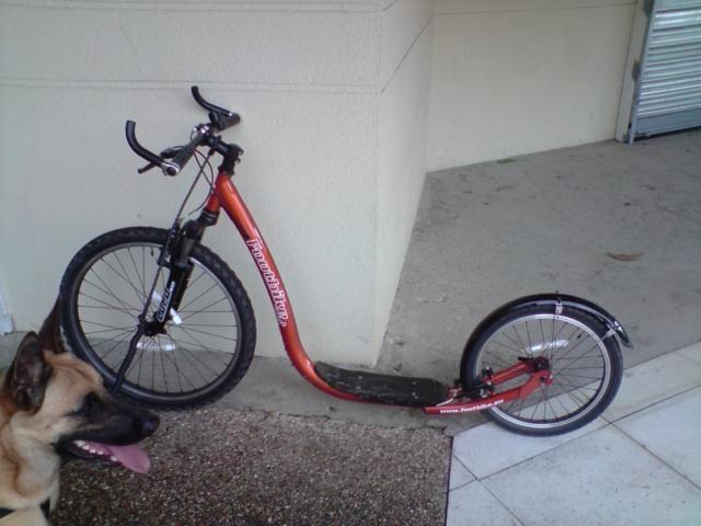 Mes débuts en Footbike ! P0807011