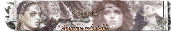 Commandes de banniere Silena10