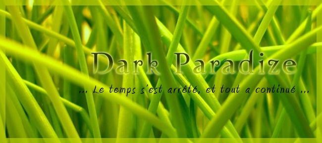 Dark-paradize