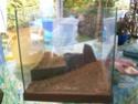 aquarium 180l, 39l crevette, 20l repro, 17l crevette, 12l combattabt, et 30l red cherry (diablotin) 42424210