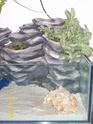 aquaterrarium - Page 3 Projet15