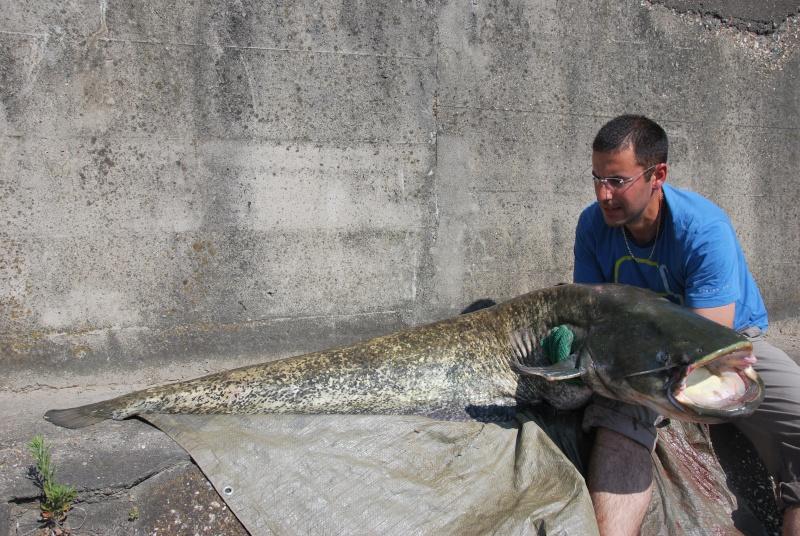 Découverte de la pêche du glane en dérive avec Franky Dsc_0010