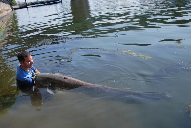 Découverte de la pêche du glane en dérive avec Franky Dsc_0012