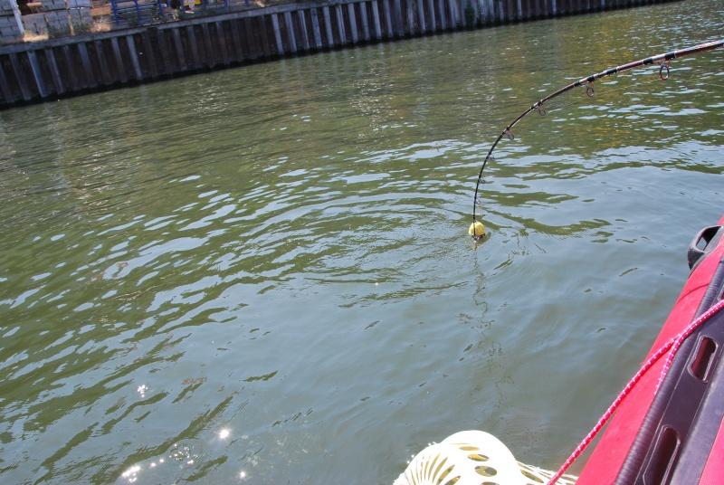 Découverte de la pêche du glane en dérive avec Franky Dsc_0014