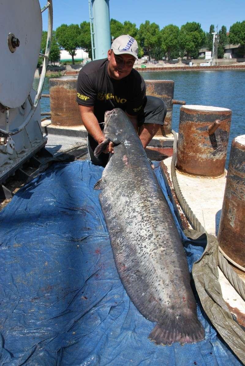 Découverte de la pêche du glane en dérive avec Franky Dsc_0113