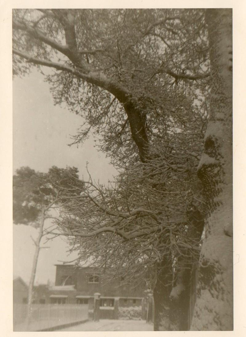Ain M'lila en janvier 1962 Img18210