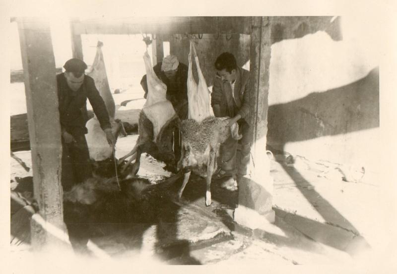 Ain M'lila en juin 1962 Img19710