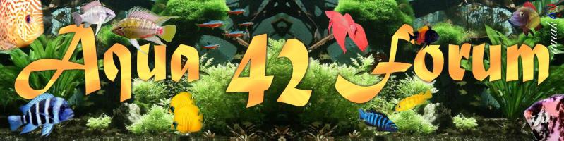 Bienvenue sur le forum d' aquariophilie de la Loire