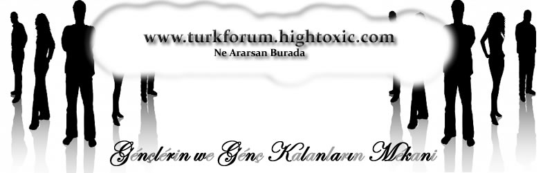 turkforum.hightoxic.com