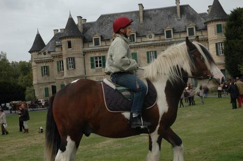 Une photo de vous et votre cheval - Page 7 Dsc_0310