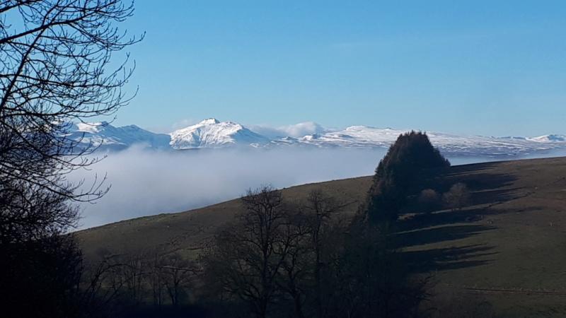 Photo du jour dans le Cantal - Page 5 20201215