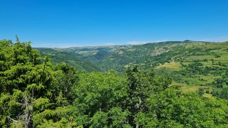 Vallée de la Sianne 20896210