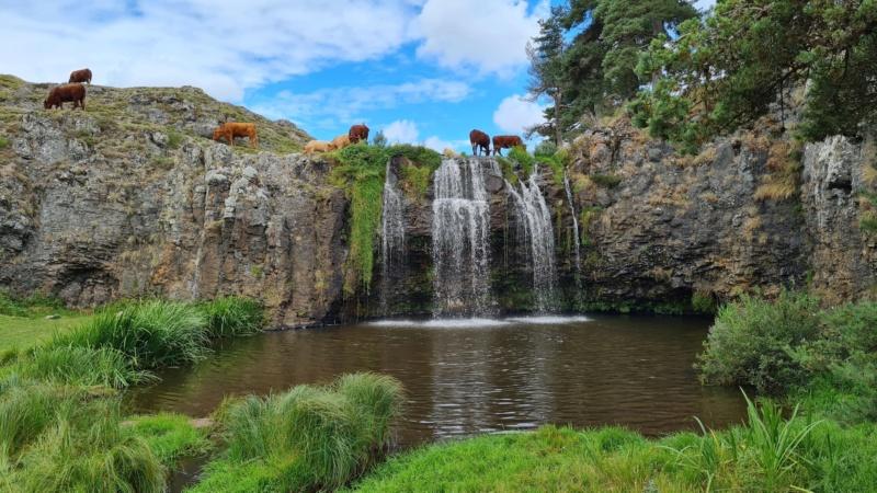La cascade des Veyrines (Allanche) - Page 4 24150210