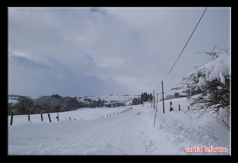 Autour d'Allanche (week end du 2 février 2019) Dsc_2210