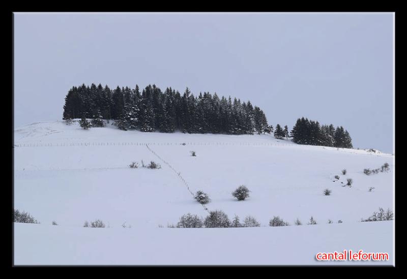 Autour d'Allanche (week end du 2 février 2019) Dsc_2211